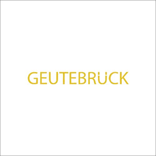 Geutebruck High Level Integration