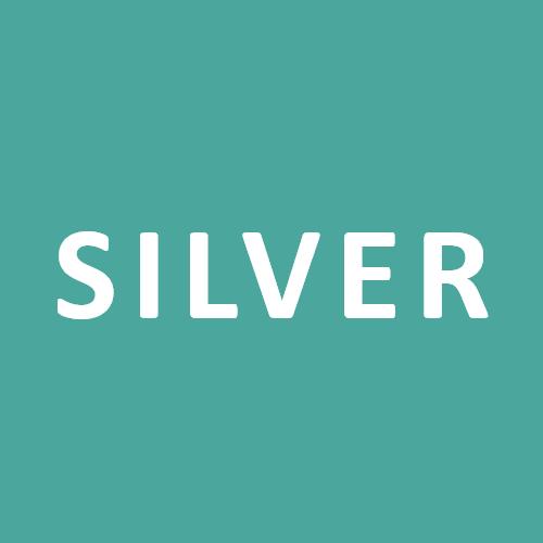 School Silver